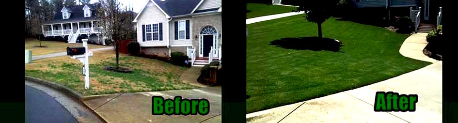 A weedy bermuda lawn near Dallas, Ga Before and After our Lawn Care Program
