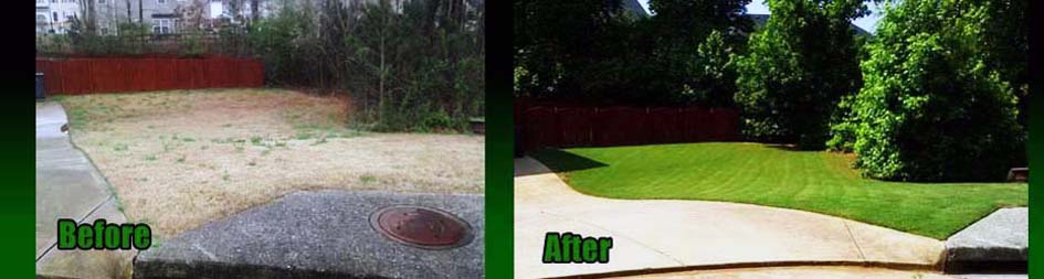 A bermuda lawn near Marietta, ga Before and After our Lawn Care Treatments